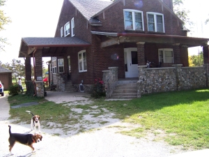 Borden home with welcoming beagles