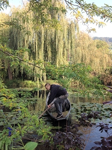 Worker maintaining beautiful gardens at Giverny
