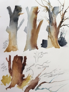 Demonstration of considerations in painting tree trunks and branches, watercolor by Jo Myers-Walker