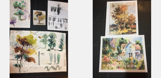 Sketches and paintings by artist Jo Myers-Walker showing trees in watercolor