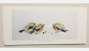 Cheerleaders, reproduction print of original watercolor painting of whimsical birds by artist Jo Myers-Walker